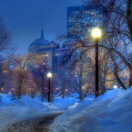 Joann Vitali - Winter Path - Boston Public Garden