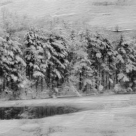 Kathy Jennings - Winter Pond