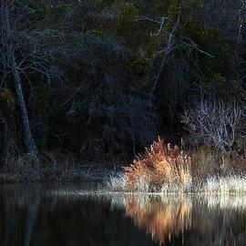 Mark McKinney - Winter Pond