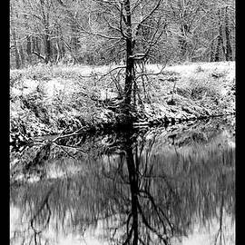 David Lester - Winter Reflections 3