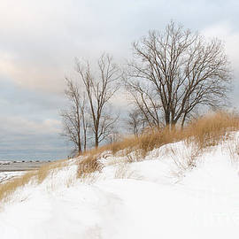 Karen English - Winter Sand Dune