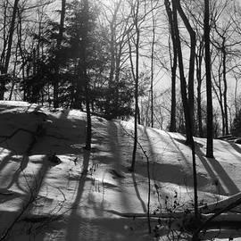 David T Wilkinson - Winter Shadows