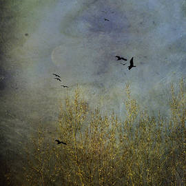 Diane Schuster - Winter Song