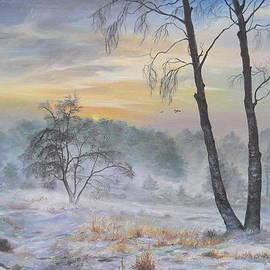 Sorin Apostolescu - Winter Storm