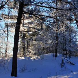 Jim Vance - Winter Sun 2