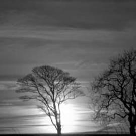 Clive Beake - Winter Sun