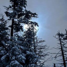 James Aiken - Winter Sun