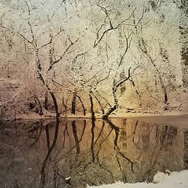 Evie Carrier - Winter Sunrise Grand Rapids Michigan
