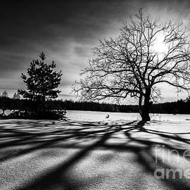 Igor Baranov - Winter sunrise