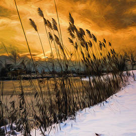 Chris Bordeleau - Winter sunrise through the reeds - Artistic