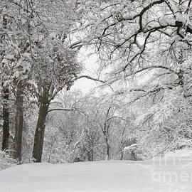 E B Schmidt - Winter Trail