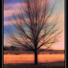Kathleen Struckle - Winter Tree