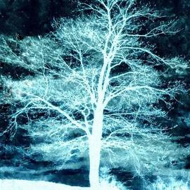 Janine Riley - Winter Whispers through the Night