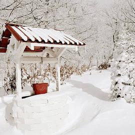 Blaine Owens - Winter Wishing Well