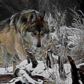 Ernie Echols - Winter Wolf Digital Art
