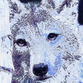 Jane Schnetlage - Winter Wolf