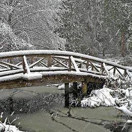 Brian Chase - Winter Wonderland