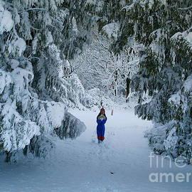 Richard Brookes - Winter Wonderland