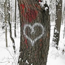 Ann Horn - Winter Woods Romance