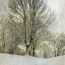 Randi Grace Nilsberg - Winterly Peace