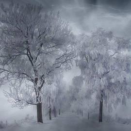 Veikko Suikkanen - Winter