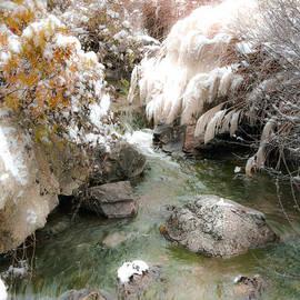 Julie Palencia - Winters Waterfall