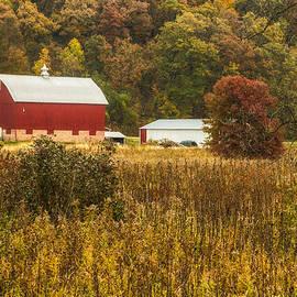 Lindley Johnson - Wisconsin Fall