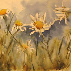 Ramona Kraemer-Dobson - Withering Daisy