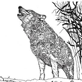 Jessica Coulter - Wolf 1