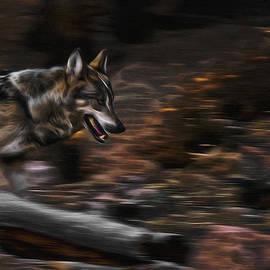Ernie Echols - Wolf Run Digital Art