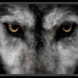 Ernie Echols - Wolf Stare