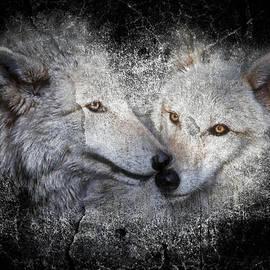 Athena Mckinzie - Wolf Stone