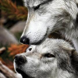 Steve McKinzie - Wolf Whispers