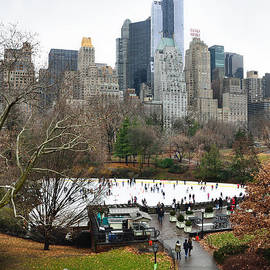 RicardMN Photography - Wolman rink in Central Park and buildings from Rat Rock