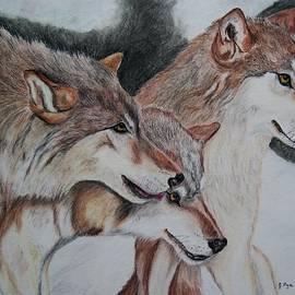 Joan Pye - Wolves
