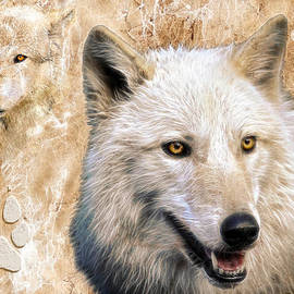Steve McKinzie - Wolves