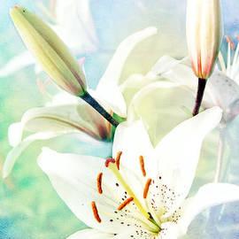 Lali Kacharava - Wonderful lilies