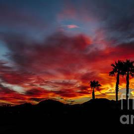 Robert Bales - Wonderful  Sunrise
