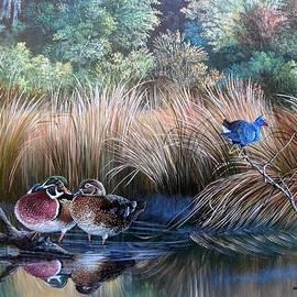 Daniel Butler - Wood ducks- On Golden Pond