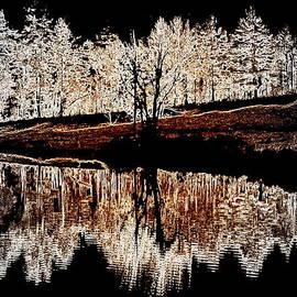 Mim White - Wood Glow