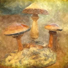 Amanda Struz - Wood Mushrooms in Watercolor