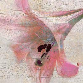 Douglas MooreZart - Wood Panel with Amaryllis Flower