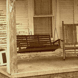ARTography by Pamela  Smale Williams - Porch Swingers