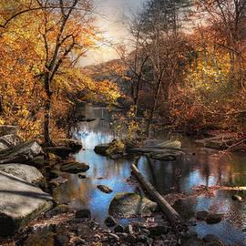 Robin-lee Vieira - Woodland Autumn