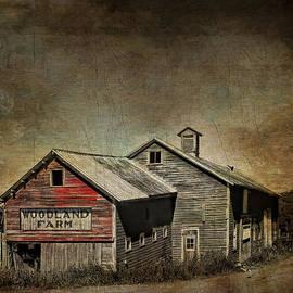 Pamela Phelps - Woodland Farm