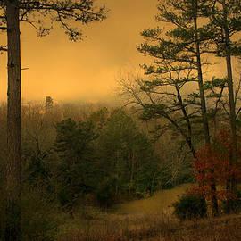 Nina Fosdick - Woodland Pond