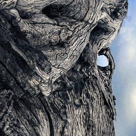 Petros Yiannakas - WoodMan
