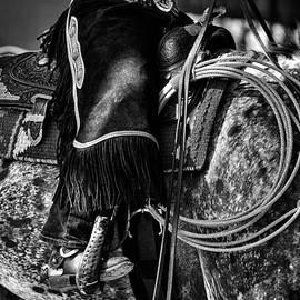 Vadim Boytsov - Working Cowhorse