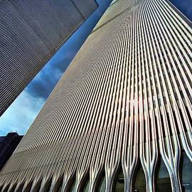 Allen Beatty - World Trade Center