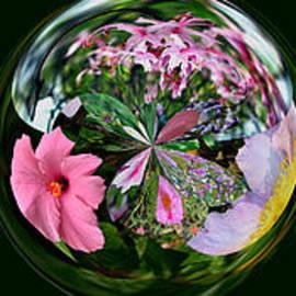 Larry Bishop - Worlds of Flowers